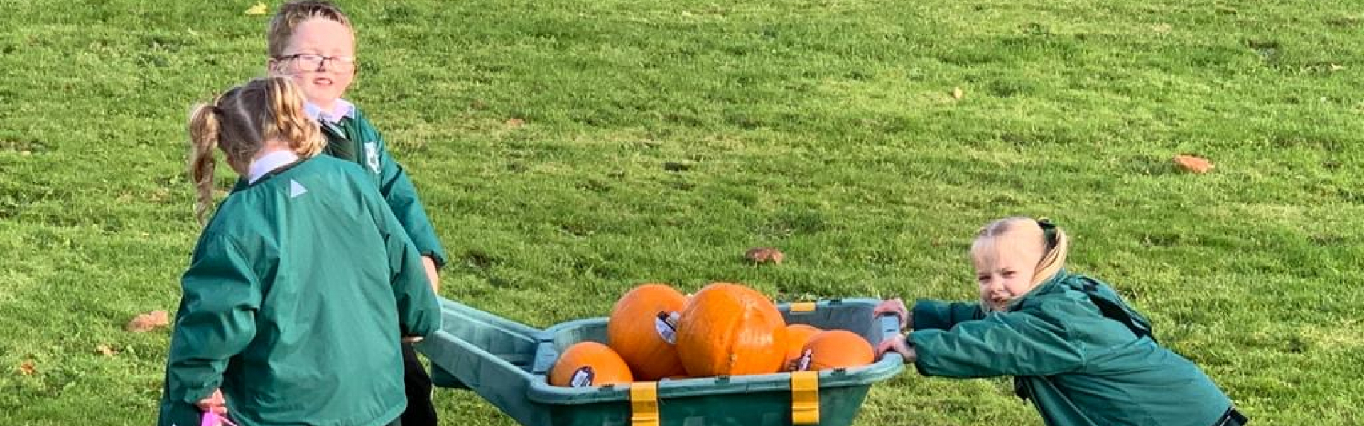 Pumpkin picking.jpg